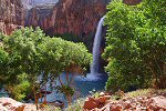 Go To Havasu Canyon Trail